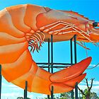 The Big Prawn by peasticks