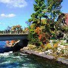 Autumn Cottage Landscape by Gracey