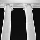 Ionic Columns of Thomas Jefferson II by SilverLilyMoon