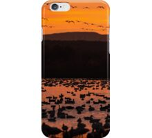 Red sky at dawn iPhone Case/Skin