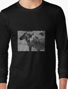 Zebras Long Sleeve T-Shirt