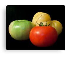 Tomato Trio Canvas Print