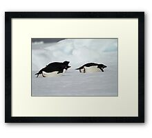 Surfin' the ice Framed Print