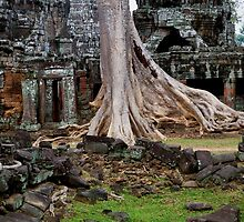 Ta Prohm Temple Ruins in Cambodia by Artur Bogacki