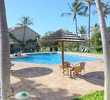 Kim Insley-Morrell, R(S) - Best Maui Realtor by dana723