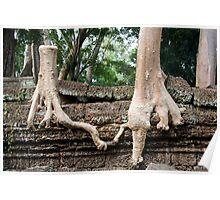 Kapok Trees United Poster
