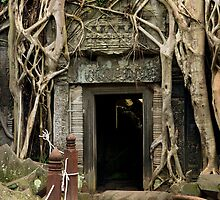 Entrance to the Ta Prohm Temple in Cambodia by Artur Bogacki