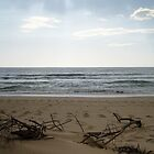Sticks on the beach by emsta