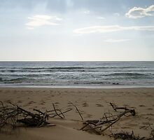 Sticks on the beach by emsta