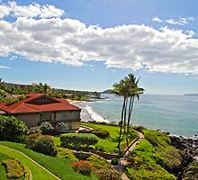 Kim Insley-Morrell, R(S) - Maui mls Listings by dana723