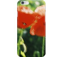 Poppy I. iPhone Case/Skin