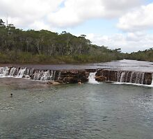 Fruit Bat Falls by dozzam