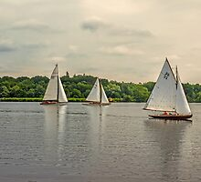 Sailing on Wroxham Broad. by Avril Harris