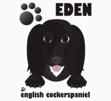 Cute Eden English Cocker Spaniel - 8 miles from home by 8milesfromhome
