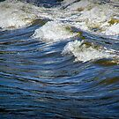 Whitecaps on the Rapids of the Grand River by Randall Nyhof