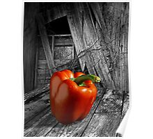 Rural Red Pepper Poster