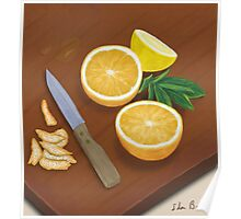 Citrus. Still Life. Digitally Painted Orange and Lemon Slices Poster