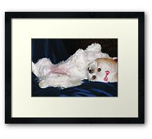 ❤‿❤PLAYMATE OF THE MONTH-FULL FRONTAL VIEW AW ❤‿❤ Framed Print