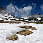 Glacier Stepping Stones by Dan Mihai