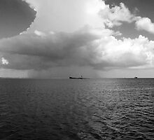 Storm on Bay by Robert Brown