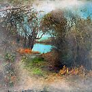 As the Mist Clears by Susan Werby