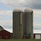 Ohio Silos by Monnie Ryan