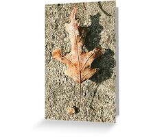 Fall for me Greeting Card