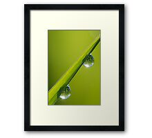 Morning Diamonds Framed Print