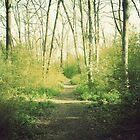 Fairmont Path by JebRand