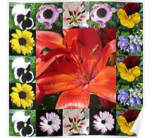 Floral Collage Featuring Orange Lily Poster