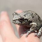 A Frog on the Hand by AquilusDomini