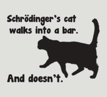 Schrodinger's Bar Joke by FANATEE