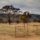 Open 24 /7  Farm Gate  Australia  Canberra by Kym Bradley