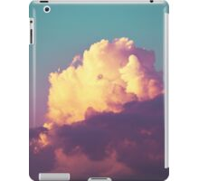 Double Approval iPad Case/Skin