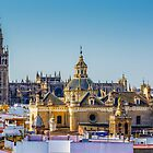 Seville Cathedral and the Iglesia del Salvador. by MikeSquires