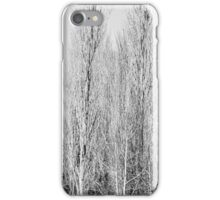 Winter iPhone Case/Skin