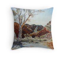 Barraranna Gorge, Arkaroola, Flinders ranges Throw Pillow
