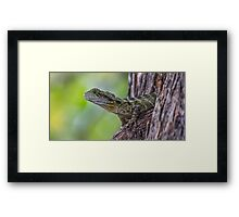 Dragon In A Tree Framed Print