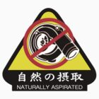JDM - Naturally Aspirated by ShopGirl91706