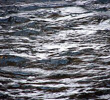 Roaring River Ripples by Chris Gudger