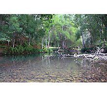 Crystal Creek ... Photographic Print