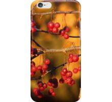 Red and Gold iPhone Case/Skin