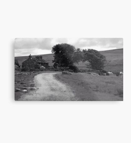 Farmhouse Road Metal Print
