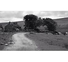 Farmhouse Road Photographic Print