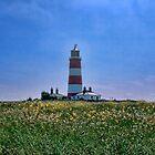 Happisburgh Lighthouse Norfolk by Avril Harris