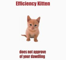 Efficiency Kitten by KittenFlower