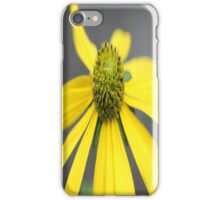 Yellow Flower - Sizergh Castle Gardens Cumbria iPhone Case/Skin