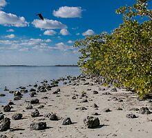 Florida Waterscape by Karen Denise Porter