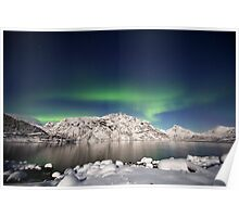 Arctic night Poster