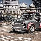 Mini Mini by Trevor Middleton